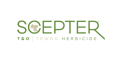 SCEPTER T&O 70 WDG Herbicide